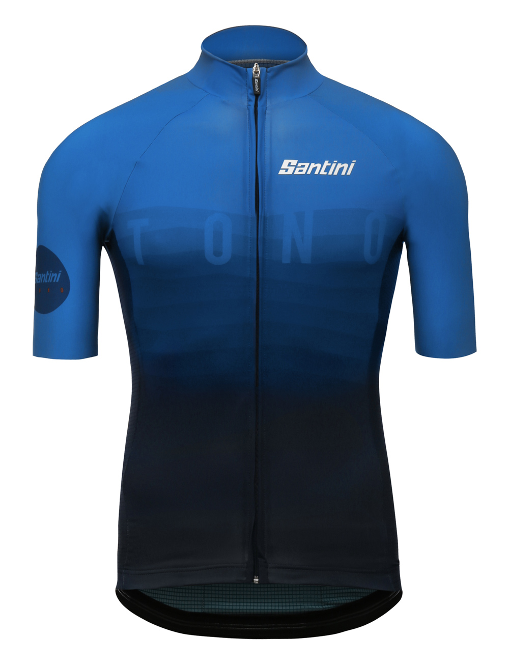 Image result for santini sms